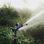 Impact Atom 22 sprinkler on small vegetable garden irrigation